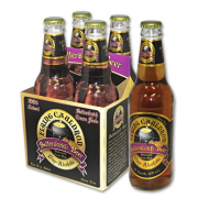 Butterscotch Beer Flying Cauldron 4 x 355 ml Burrobirra Harry Potter non alcolica